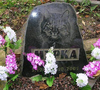 kassi-koera-lemmiklooma-hauakivid-6